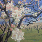 Linda Sorensen Apple Blossoms Near and Far