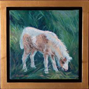 Linda Sorensen Baby Miniature Horse with gold faced floater frame