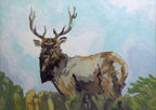 Linda Sorensen Pierce Point Elk Thumbnail