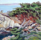 Linda Sorensen Red Lichen and Cypress Thumb